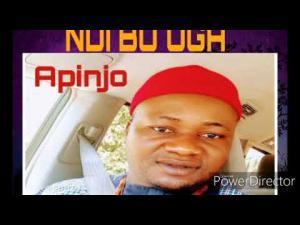 Apinjo Okenwa Oduma - Ndi Bu Oga | Latest Igbo Highlife Song 2020