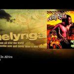 Femi Kuti – Politics In Africa | Melynga